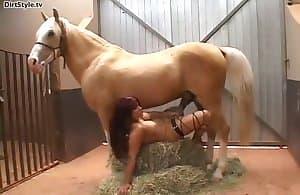 dick horse