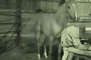 dog-fuck-girl  free-horse-porn
