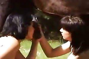 horse-sex dick