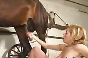 pleasure horse-sex