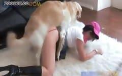 animal sex fun