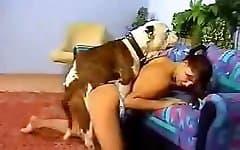 sex animal