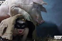 bestiality videos