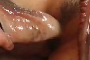 porn animal fuck