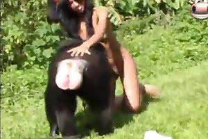 babe, zoo-fuck