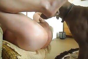 guy, dog-porn