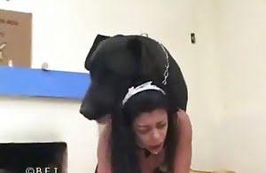 lady, doggy-porn